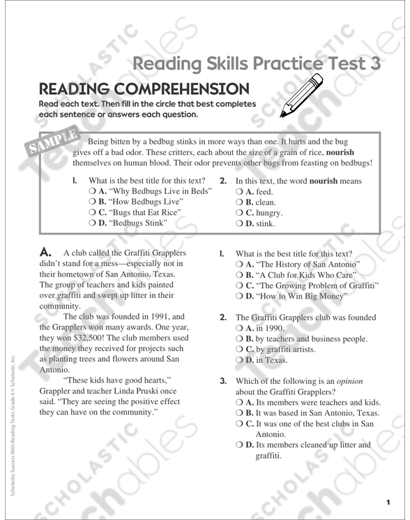 Reading Skills Practice Test 3 (Grade 4) | Printable Test Prep