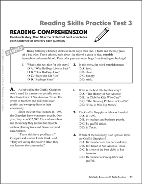 Reading Skills Practice Test 3 (Grade 4) - Printable Worksheet