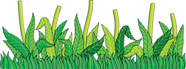 Grass and Flower Stems - Image Clip Art