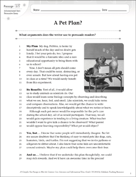 A Pet Plan?: Text & Questions - Printable Worksheet