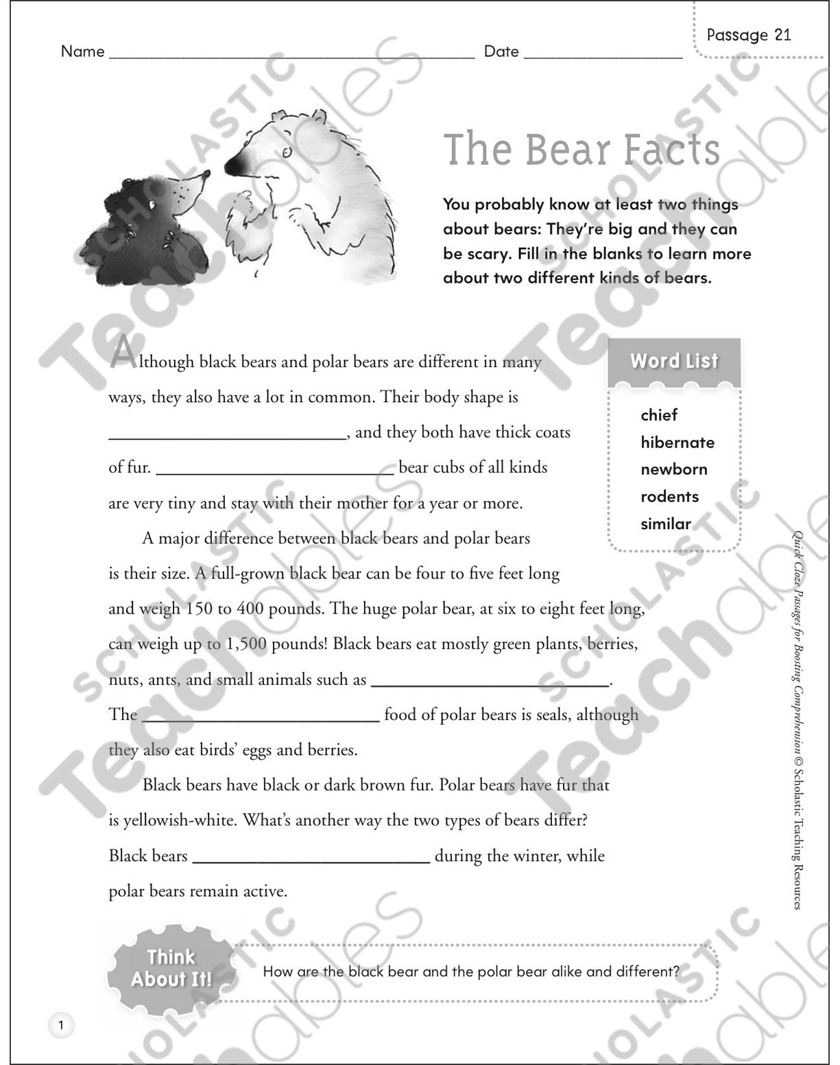 The Bear Facts Quick Cloze Passage Printable Lesson Plans