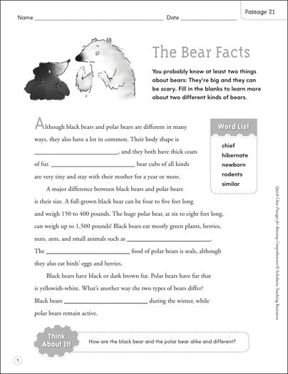 The Bear Facts: Quick Cloze Passage - Printable Worksheet