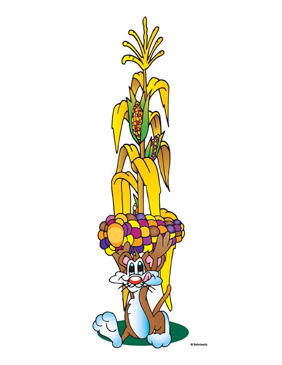 Cornstalk With Rabbit - Image Clip Art