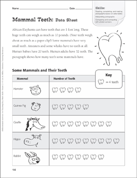 Mammal Teeth (Pictograph): Tiered Math Practice - Printable Worksheet