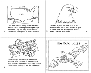 The Bald Eagle - Printable Worksheet