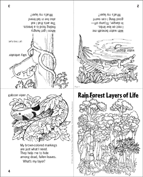 picture about Layers of the Rainforest Printable called Rain Forest Levels of Daily life: Science Riddle Printable Mini