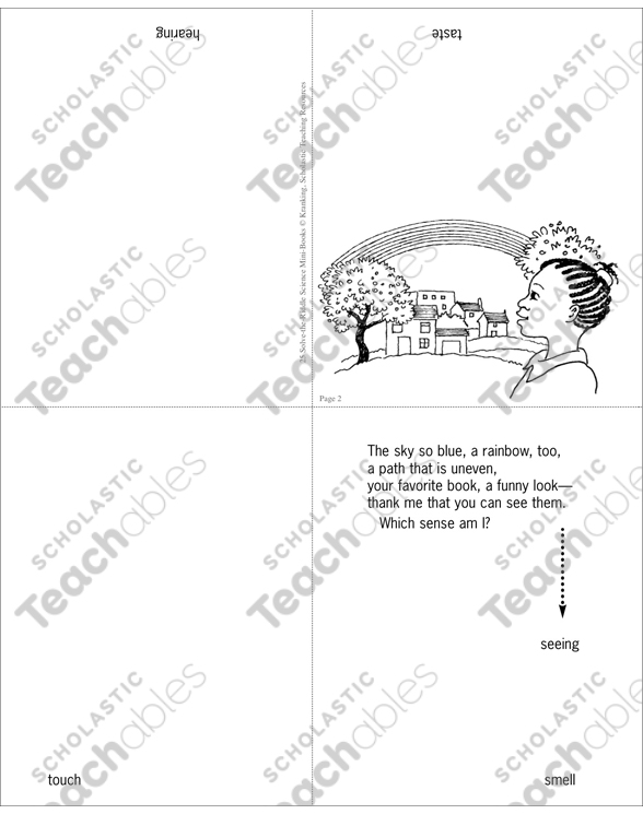 The Five Senses Science Riddle Printable Minibooks. See Inside. Worksheet. Sense Of Touch Worksheet At Clickcart.co