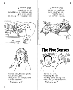 the five senses science riddle printable mini books. Black Bedroom Furniture Sets. Home Design Ideas