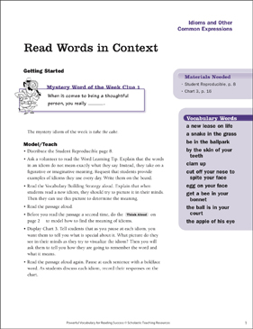 Idioms & Other Expressions: Read Words in Context - Printable Worksheet