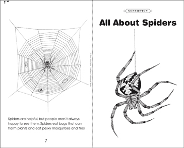 All About Spiders - Printable Worksheet