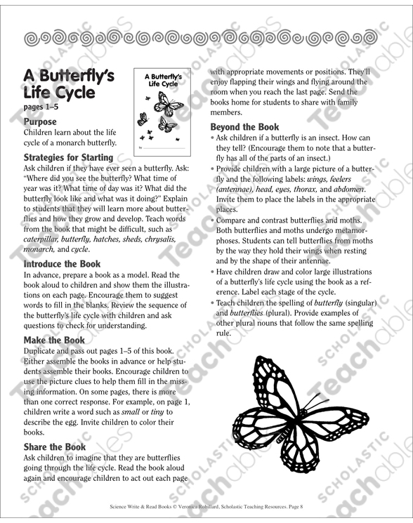 image relating to Butterfly Life Cycle Printable Book known as A Butterflys Existence Cycle Printable Mini-Guides