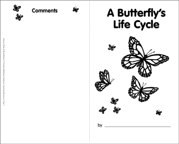 A Butterfly's Life Cycle - Printable Worksheet