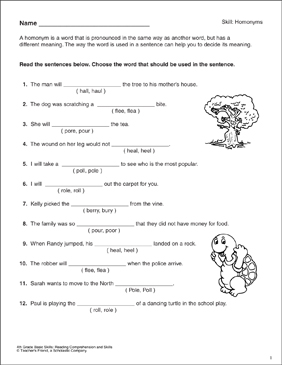Homonyms: 4th Grade Reading Skills - Printable Worksheet