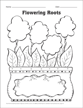 Flowering Roots Organizer & Mini-Lesson - Printable Worksheet