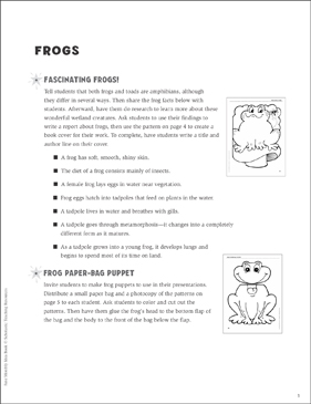Frogs: Ideas and Activities - Printable Worksheet