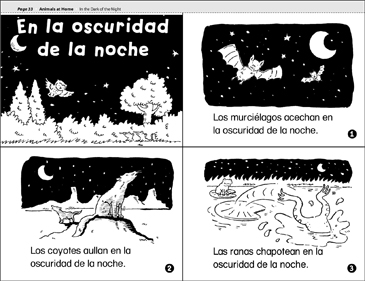 En la Oscuridad de la Nocha (In the Dark of the Night) - Printable Worksheet