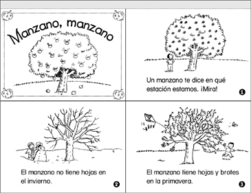 Manzano, Manzano (An Apple Tree's Year) - Printable Worksheet
