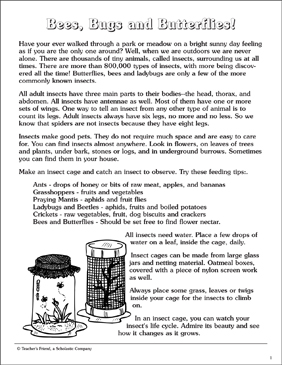 Bees, Bugs, and Butterflies: Information and Activities - Printable Worksheet