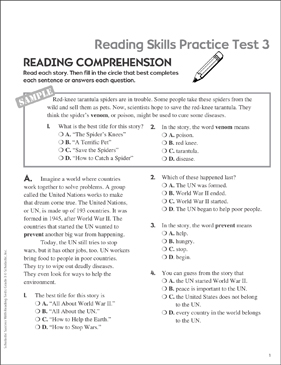 Reading Skills Practice Test 3 (Grade 3) - Printable Worksheet