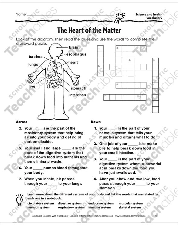 The heart of the matter science and health vocabulary printable see inside image ccuart Choice Image