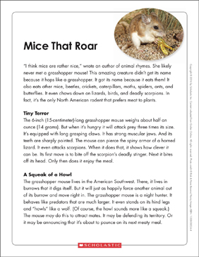 Mice That Roar: Text & Organizer - Printable Worksheet