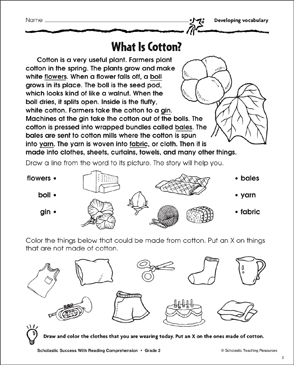 What Is Cotton? (Developing Vocabulary) - Printable Worksheet