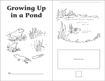 Growing Up in a Pond (Sequencing) - Printable Worksheet