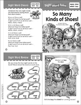 So Many Kinds of Shoes: Sight Word Tale - Printable Worksheet