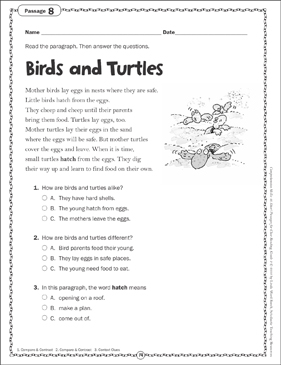 Birds and Turtles: Close Reading Passage - Printable Worksheet