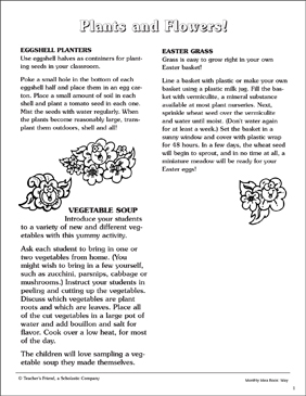 Plant and Flower Activities - Printable Worksheet