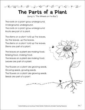 The Parts of a Plant: Content-Building Learning Song - Printable Worksheet