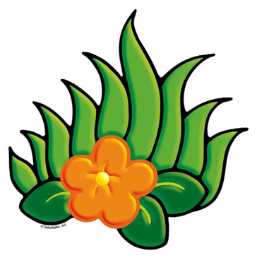 Orange Flower With Foliage - Image Clip Art