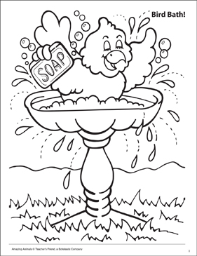 Bird Bath! Amazing Animals Coloring Page - Printable Worksheet