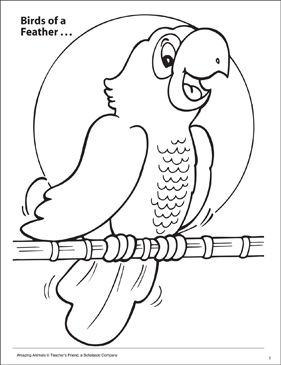 Birds of a Feather Amazing Animals Coloring Page - Printable Worksheet