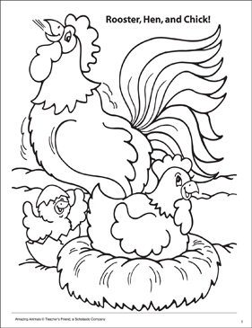 Rooster, Hen and Chick! Amazing Animals Coloring Page - Printable Worksheet