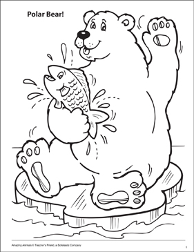 Skecth Of Iceberg Coloring Pages : Bulk Color | 365x281