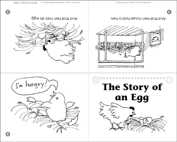The Story of an Egg - Printable Worksheet