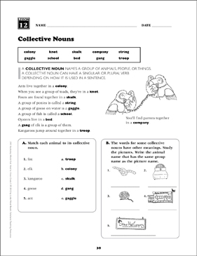 Collective Nouns: Grade 5 Vocabulary | Printable Skills Sheets