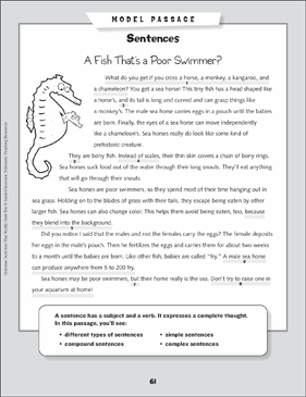 Grammar Mini-Lesson: All About Sentences - Printable Worksheet