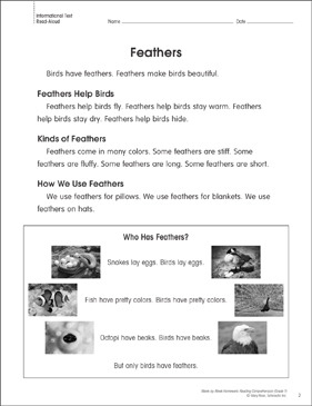 Feathers: Reading Homework - Printable Worksheet