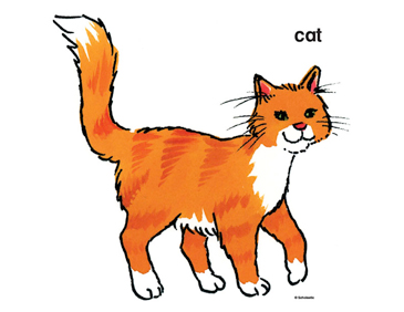 Orange Cat - Image Clip Art