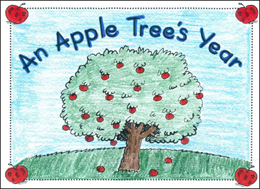 An Apple Tree's Year - Printable Worksheet
