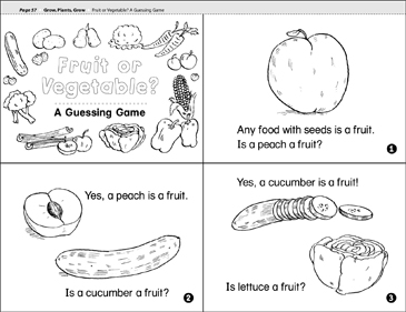 graphic relating to Printable Fruit and Vegetables titled Fruit or Vegetable? A Guessing Sport Printable Mini-Textbooks