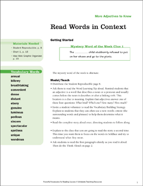 More Adjectives: Read Words in Context (Grade 5) - Printable Worksheet
