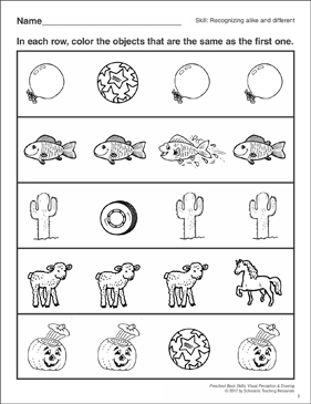 Identifying Same and Different: Visual Perception Skills ...