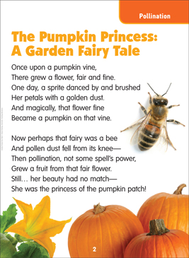 The Pumpkin Princess: Science Poem - Printable Worksheet