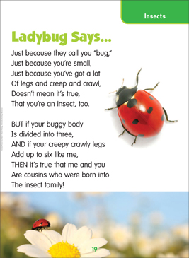 Ladybug Says...: Science Poem - Printable Worksheet