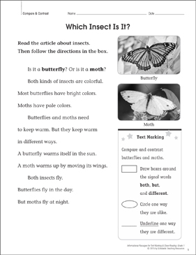 Which Insect Is It? (Compare & Contrast): Close Reading - Printable Worksheet