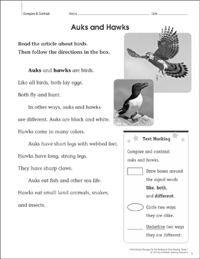 Auks and Hawks (Compare & Contrast): Close Reading - Printable Worksheet