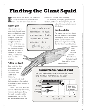 Finding the Giant Squid: Text Passage - Printable Worksheet